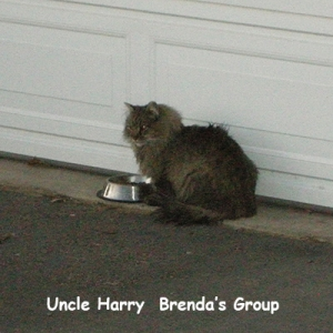 BG-Uncle-Harry