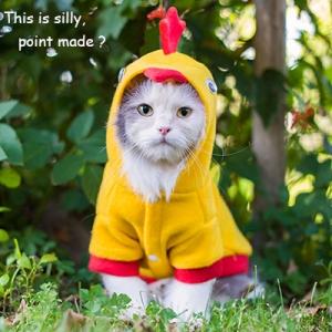 cat-chicken-costume