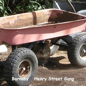 O-HS-Barnaby