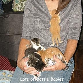 SU-leslie-babies4